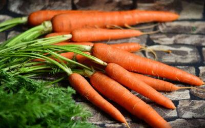10 Motivos para comer zanahorias