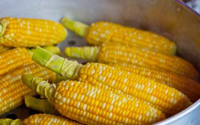 Los beneficios del maíz