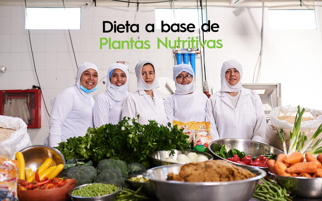 ¿What is a Plant-Based Diet?